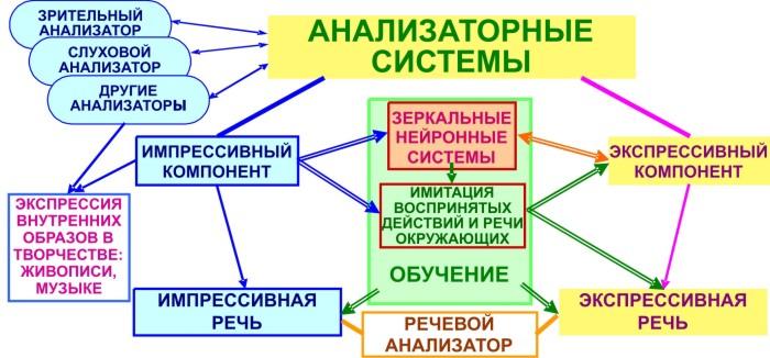 Функционирование анализатора